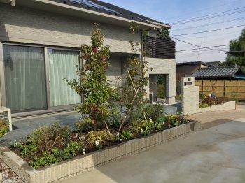 お家の前の花壇に沢山植物を植えて、とても華やかになりました!
