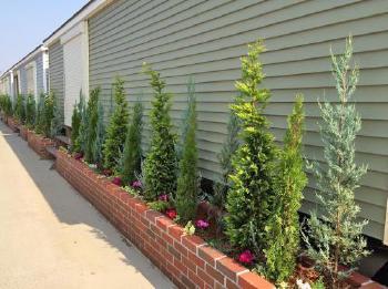 トレーラーハウスの下部を覆う、とても長いレンガ花壇。屋上緑化用の植込み材で管理も簡単です。
