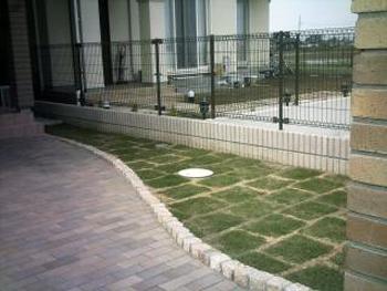 肥料も芝刈りの回数も少ない芝を植えてもらって、大満足です。