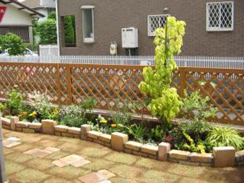 これからの季節、庭がどんな表情を見せてくれるのか楽しみです。