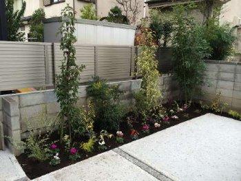殺風景だった駐車場が、沢山の植物で華やかになりました!